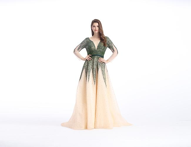 Beaded Lace European Style Long Backless Evening Dresses / Tulle Big Tail Beautiful Prom Dresses